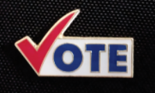 Enamel vote pin